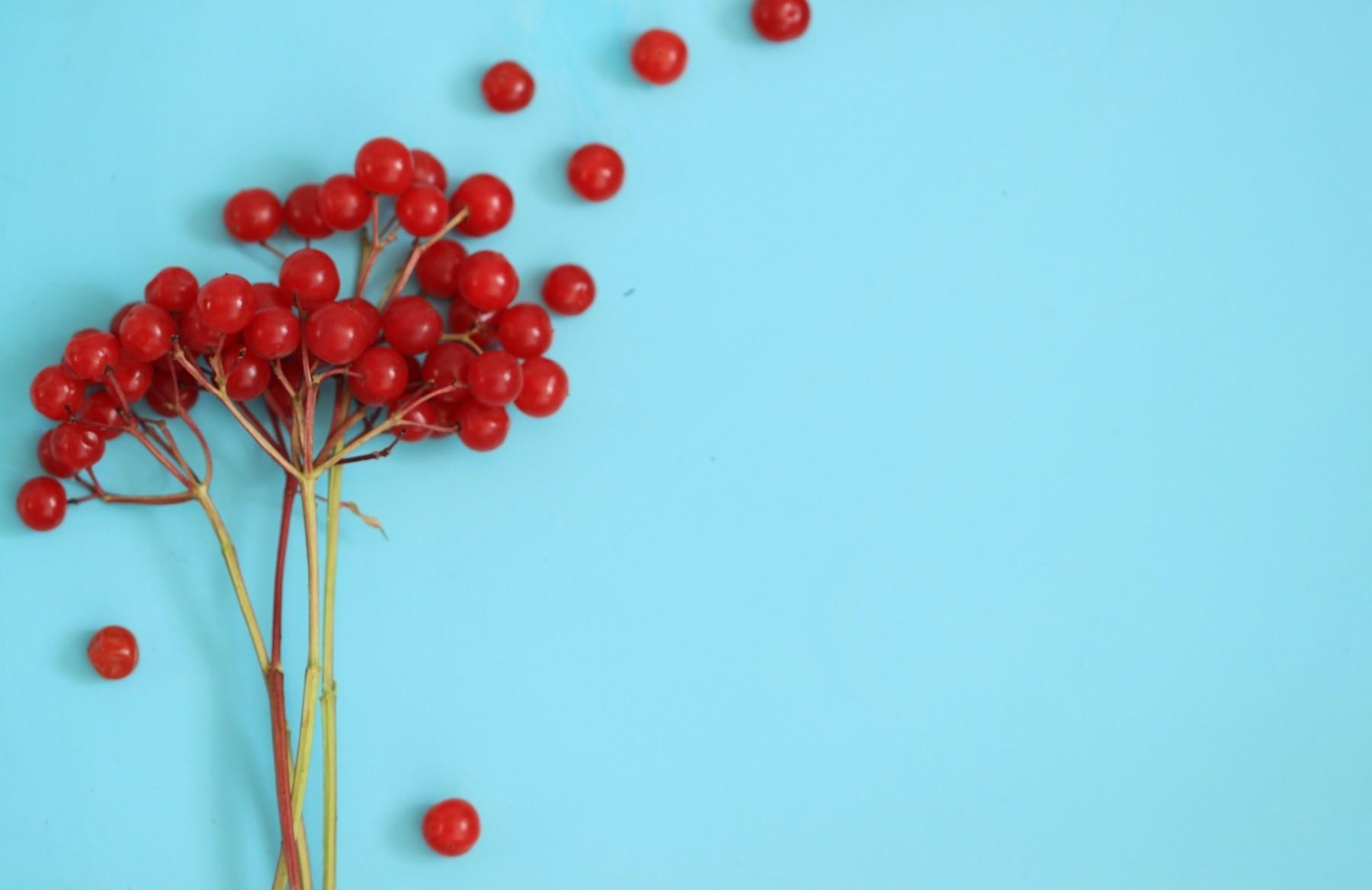 Нужно больше железа: Что такое анемия?
